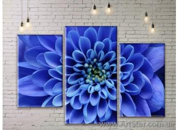 Модульные Картины Цветы, Art. FLWM0129