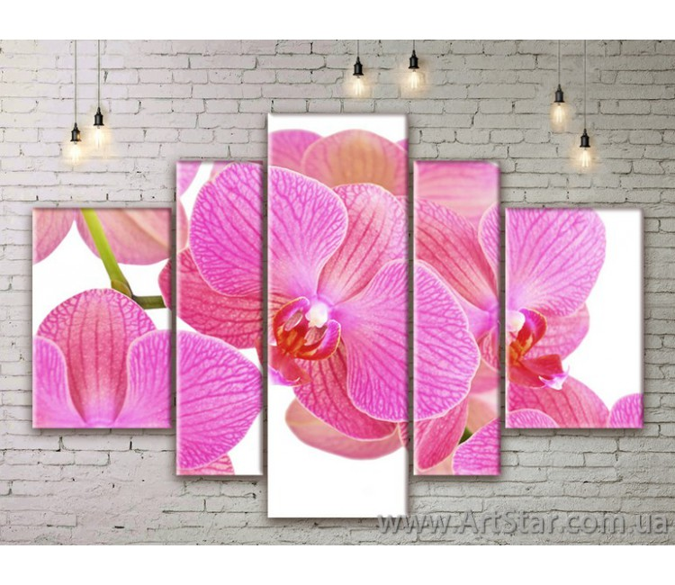 Модульные Картины Цветы, Art. FLWM0133