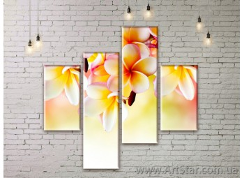 Модульные Картины Цветы, Art. FLWM0141
