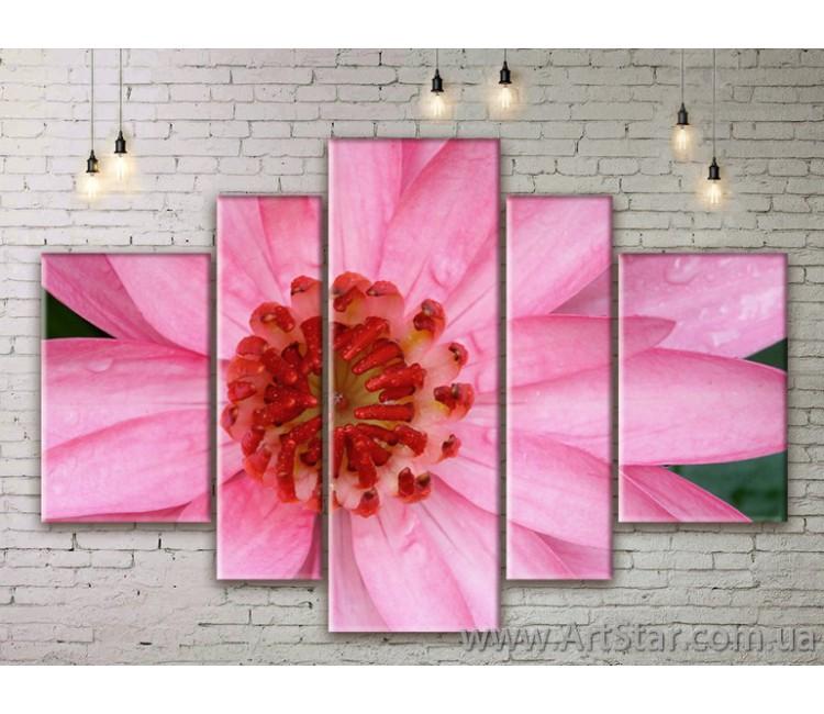 Модульные Картины Цветы, Art. FLWM0157