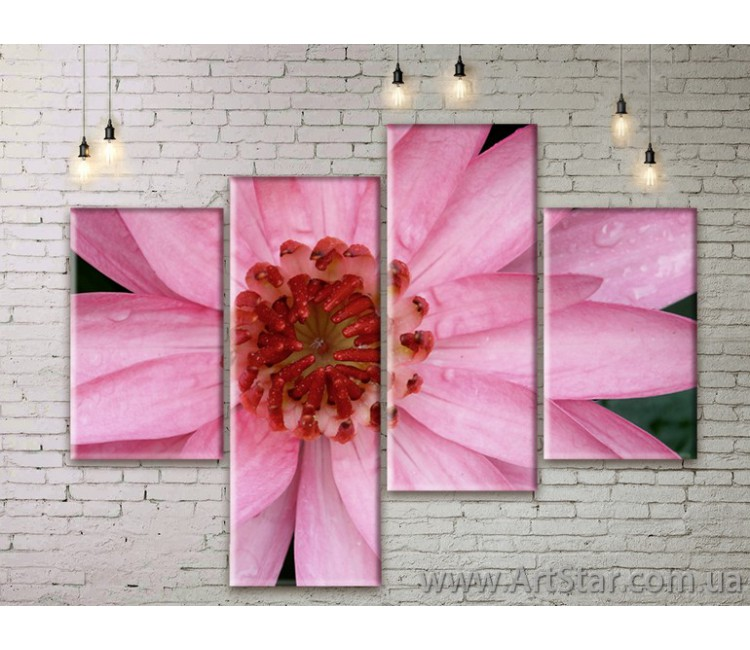 Модульные Картины Цветы, Art. FLWM0159