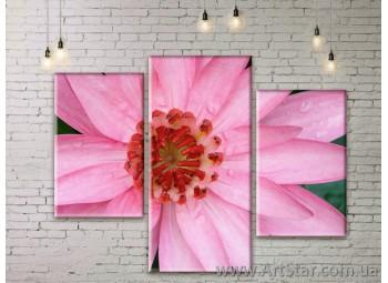 Модульные Картины Цветы, Art. FLWM0160