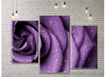 Модульные Картины Цветы, Art. FLWM0167
