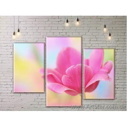 Модульные Картины Цветы, Art. FLWM0179