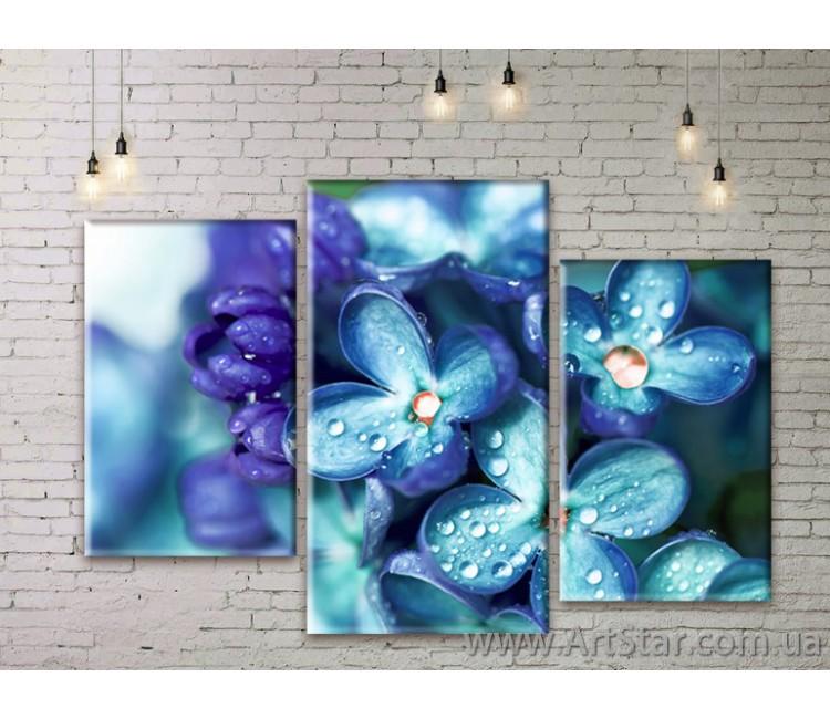 Модульные Картины Цветы, Art. FLWM0191