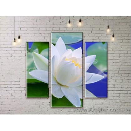 Модульные Картины Цветы, Art. FLWM0193
