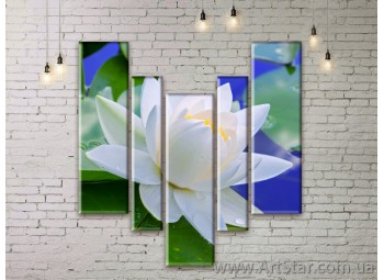 Модульные Картины Цветы, Art. FLWM0197