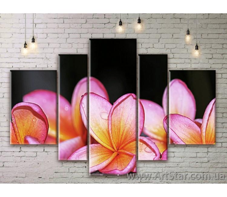 Модульные Картины Цветы, Art. FLWM0207