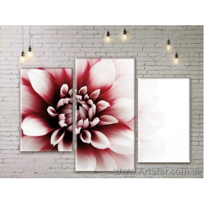 Модульные Картины Цветы, Art. FLWM0215