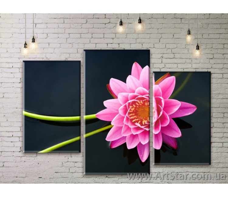 Модульные Картины Цветы, Art. FLWM0221