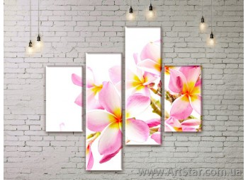Модульные Картины Цветы, Art. FLWM0225