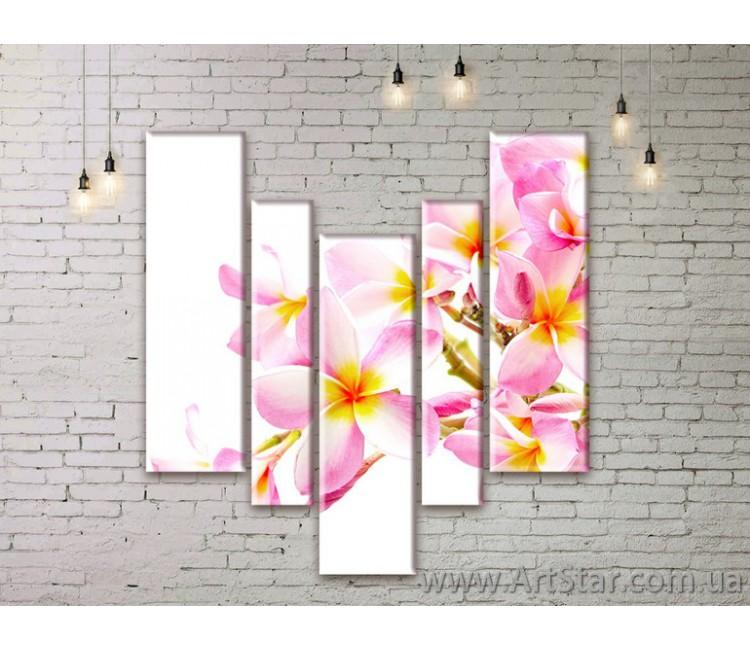Модульные Картины Цветы, Art. FLWM0227