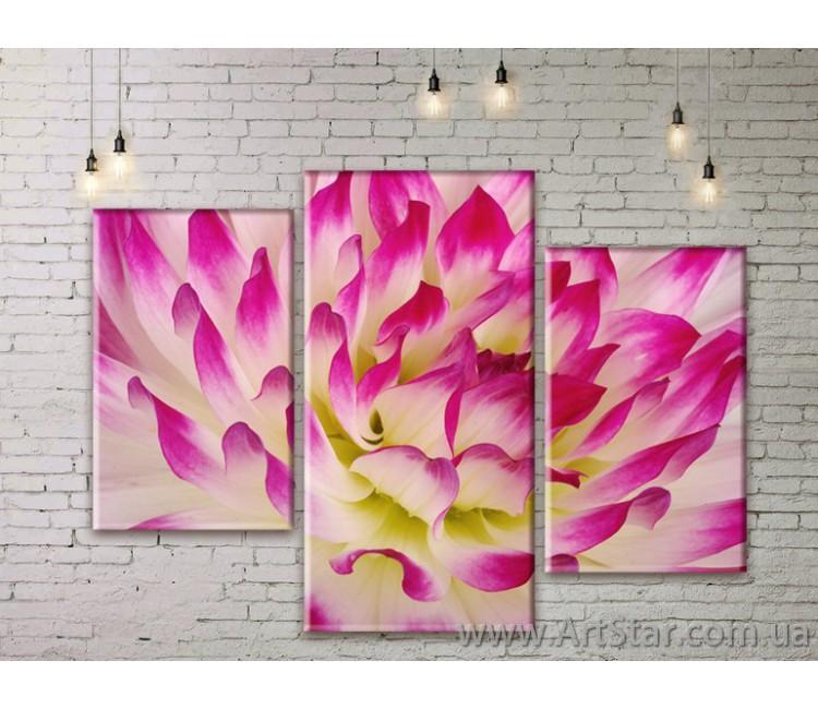 Модульные Картины Цветы, Art. FLWM0233