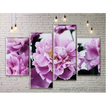 Модульные Картины Цветы, Art. FLWM0241