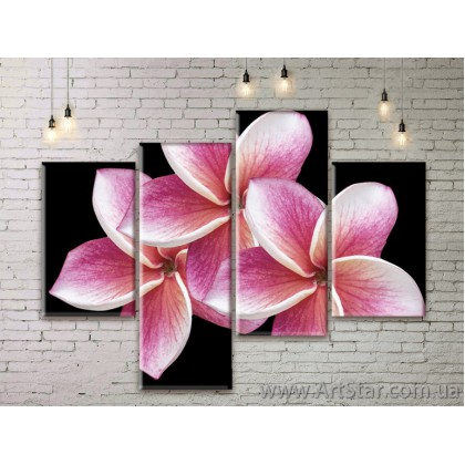 Модульные Картины Цветы, Art. FLWM0247