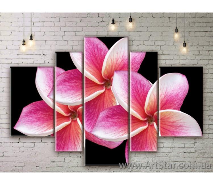 Модульные Картины Цветы, Art. FLWM0249