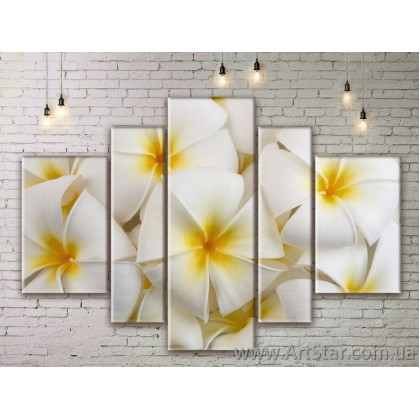 Модульные Картины Цветы, Art. FLWM0297