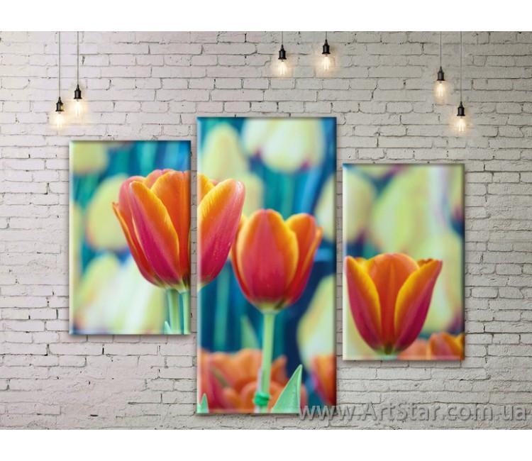 Модульные Картины Цветы, Art. FLWM0317