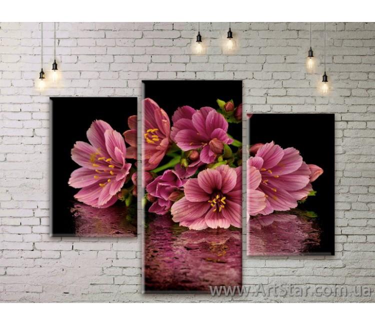 Модульные Картины Цветы, Art. FLWM0341