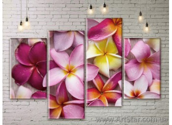 Модульные Картины Цветы, Art. FLWM0343