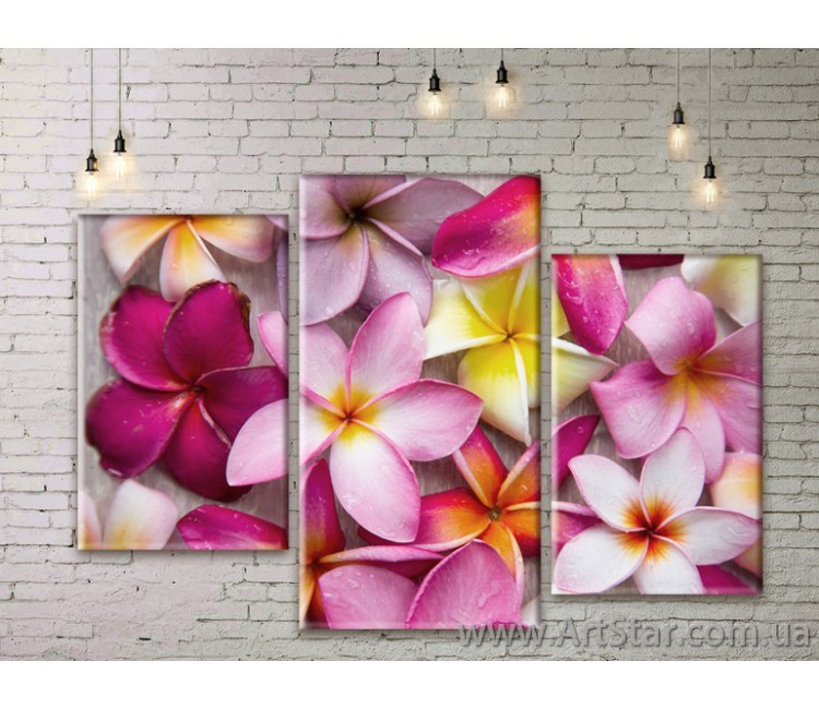 Модульные Картины Цветы, Art. FLWM0347