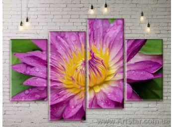 Модульные Картины Цветы, Art. FLWM0389