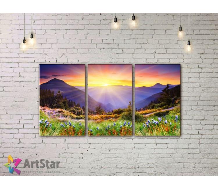 Модульные картины пейзажи, Art. NAA778014