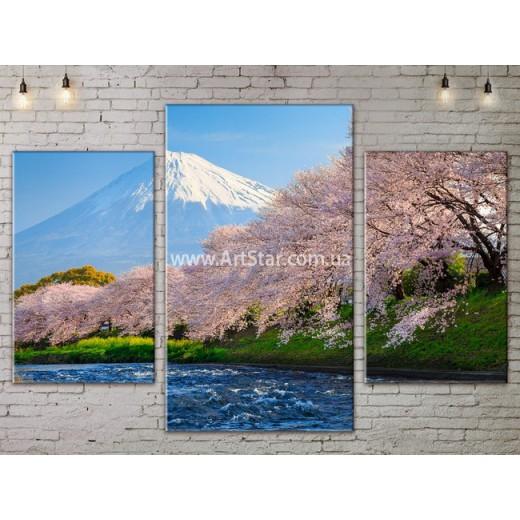 Модульные картины пейзажи, Art. NATA777061