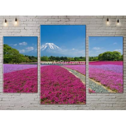Модульные картины пейзажи, Art. NATA777063
