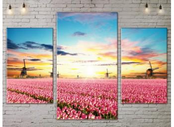 Модульные картины пейзажи, Art. NATA777119