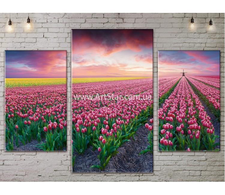 Модульные картины пейзажи, Art. NATA777131
