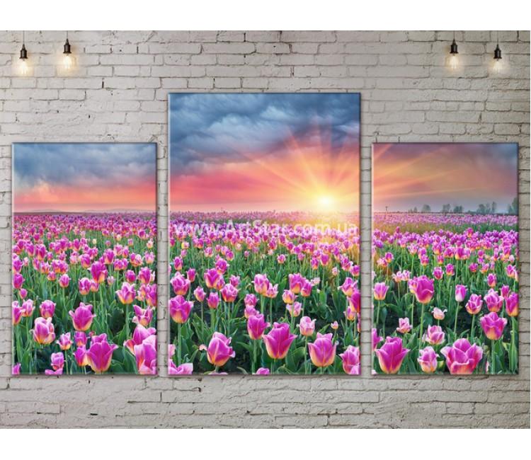 Модульные картины пейзажи, Art. NATA777143