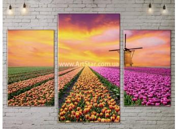 Модульные картины пейзажи, Art. NATA777163