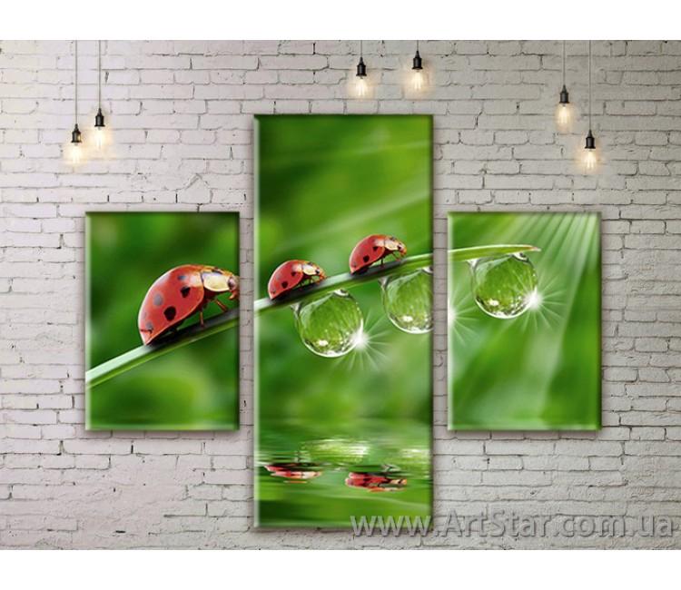 Модульные картины пейзажи, Art. NATM0007