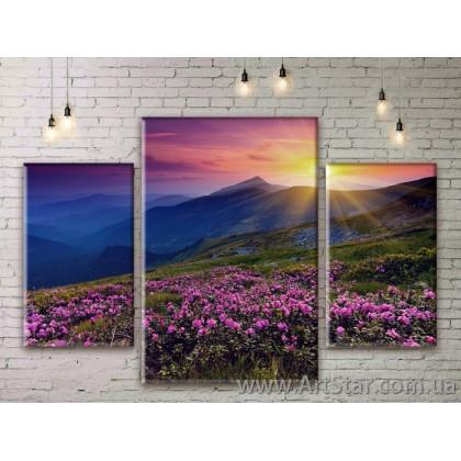 Модульные картины пейзажи, Art. NATM0037