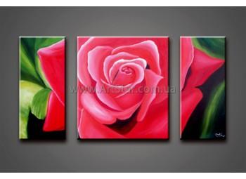 Модульные Картины Маслом, Art. HM778049