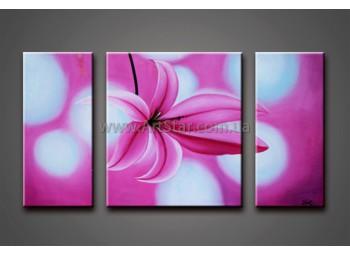 Модульные Картины Маслом, Art. HM778076