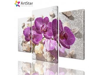 Модульная картина - Орхидеи, Art. flrs_0065