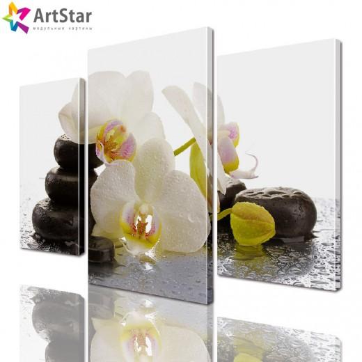 Модульная картина - Орхидеи в СПА, Art. flrs_0068