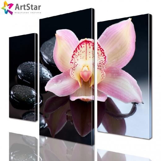 Модульная картина - Розовая орхидея, Art. flrs_0070