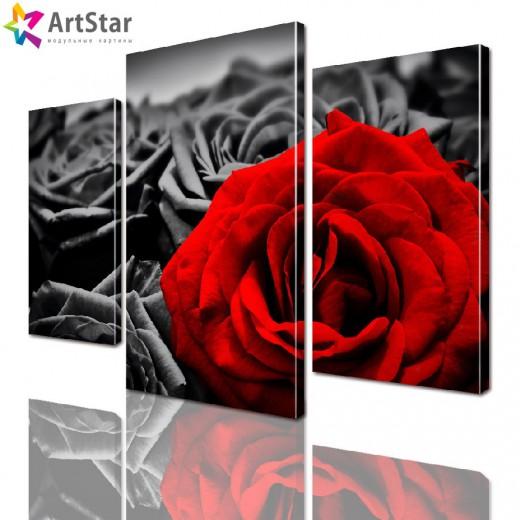 Модульная картина - Роза, Art. flrs_0076