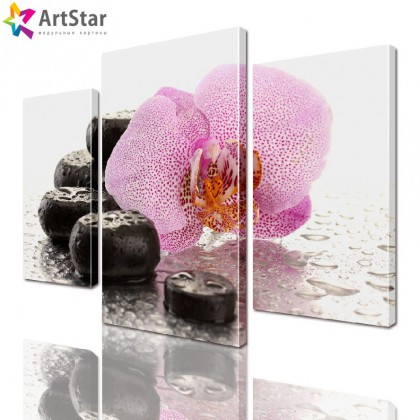 Модульная картина - Орхидея и камни, Art. flrs_0080