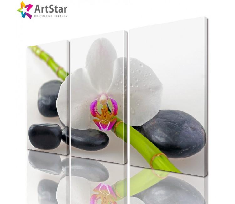 Модульная картина - Цветы, Art. flrs_0022