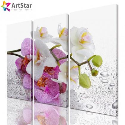 Модульная картина - Цветы, Art. flrs_0026