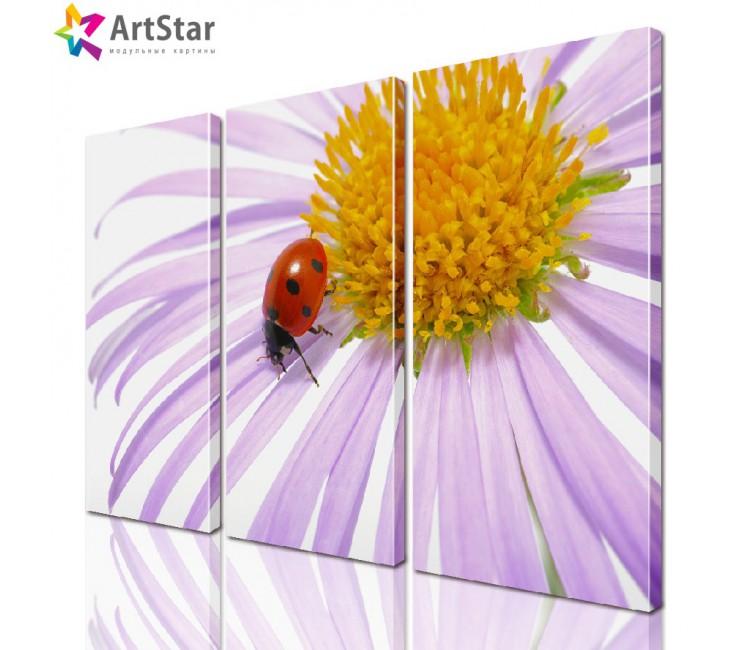 Модульная картина - Цветы, Art. flrs_0029