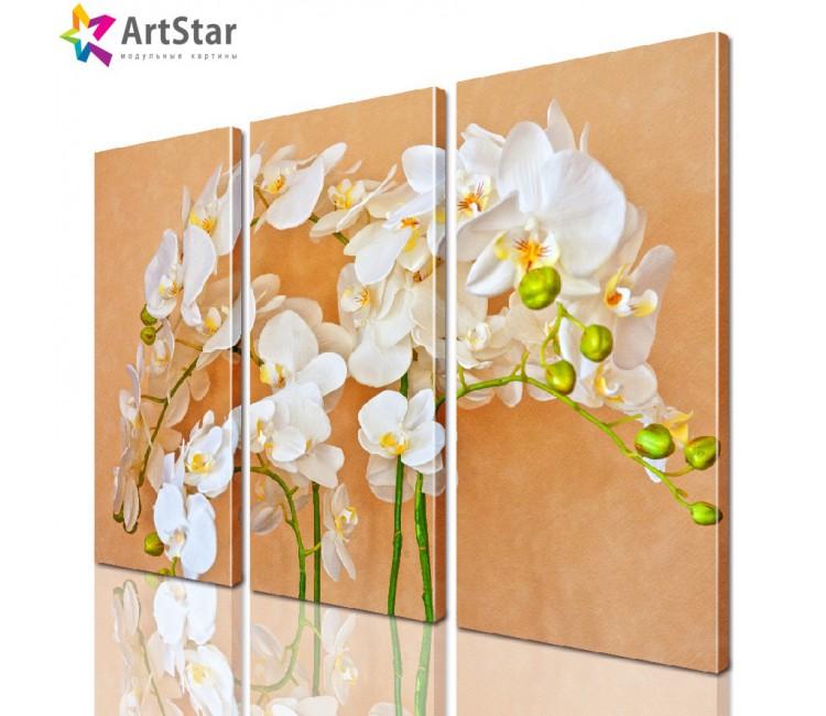 Модульная картина - Цветы, Art. flrs_0032