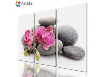 Модульная картина - Цветы, Art. flrs_0038
