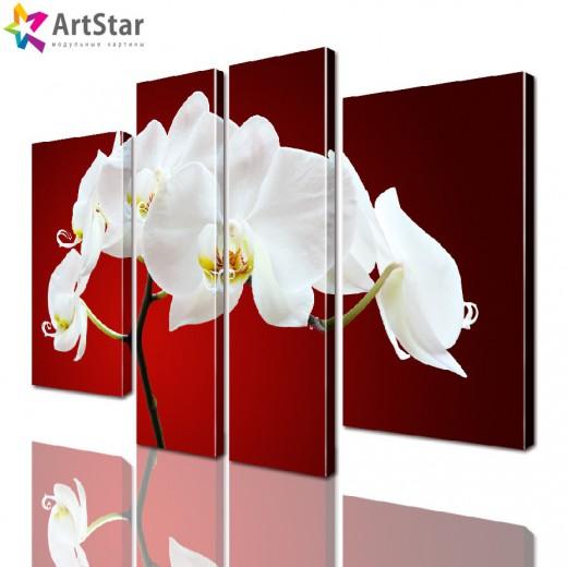 Модульная картина - Цветы, Art. flrs_0143
