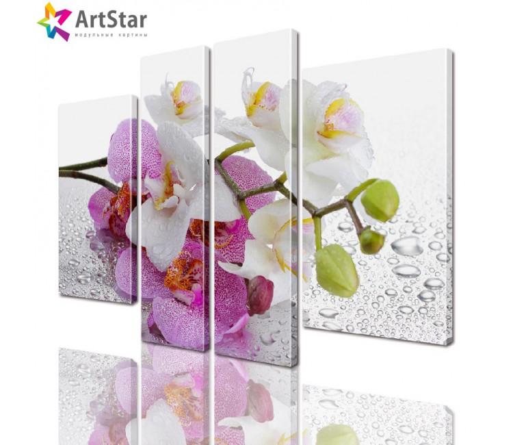 Модульная картина - Цветы, Art. flrs_0146