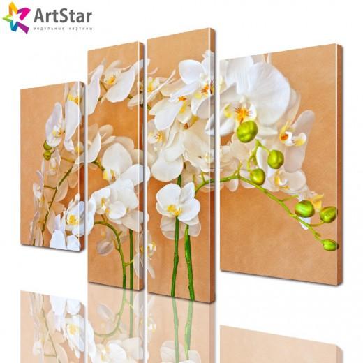Модульная картина - Цветы, Art. flrs_0152